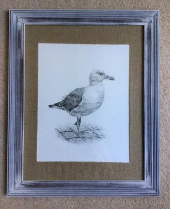 seagull-strutt