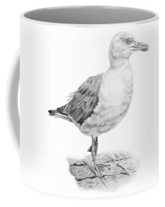 the-seagull-strutt-pencil-paws (1)