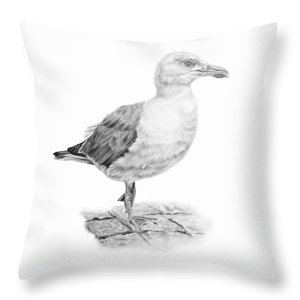 the-seagull-strutt-pencil-paws